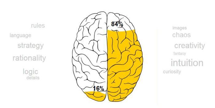 My brain test